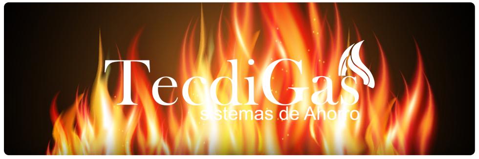 Ahorradores_de_gas-Tecdigas (2)